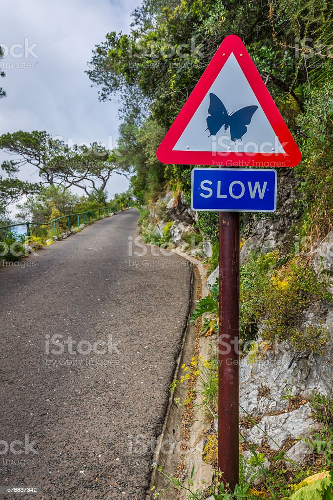 Road sign ordering slowing stock photo