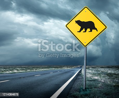 A road sign on a long straight road that leads toward an ominous horizon warns of a bear market ahead.