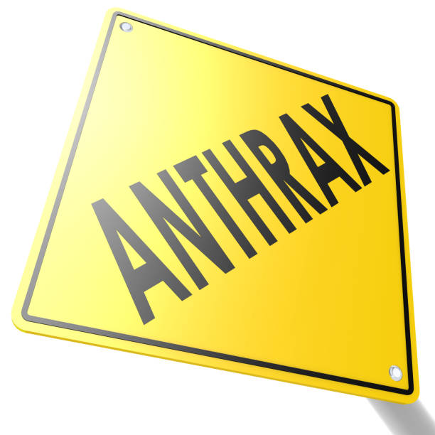 road sign with anthrax - antrace foto e immagini stock