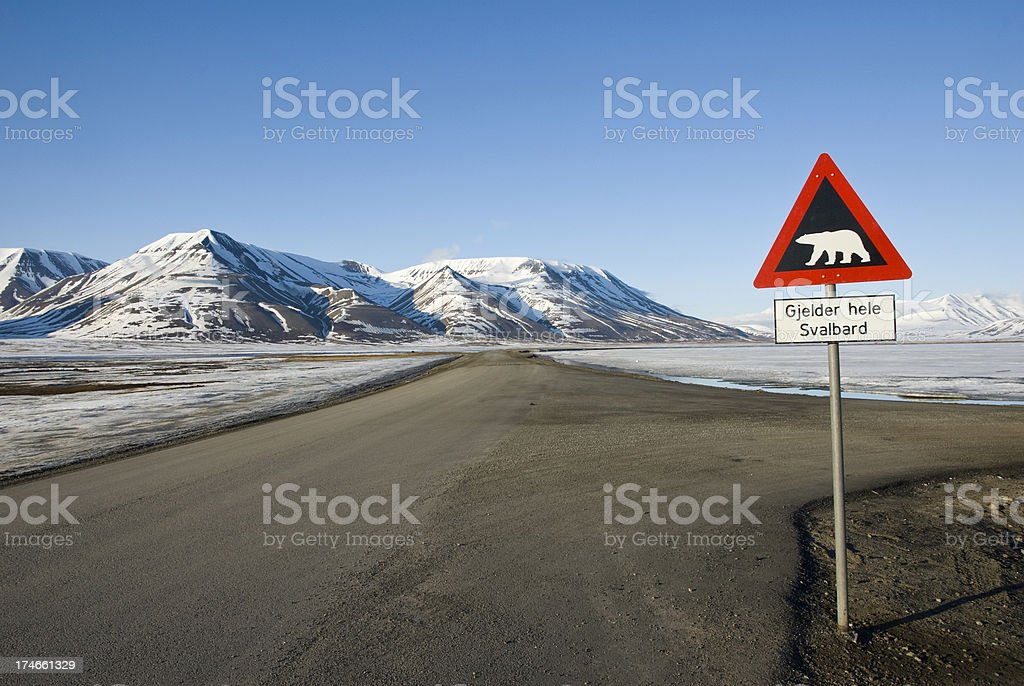 Road sign with polar bear stock photo