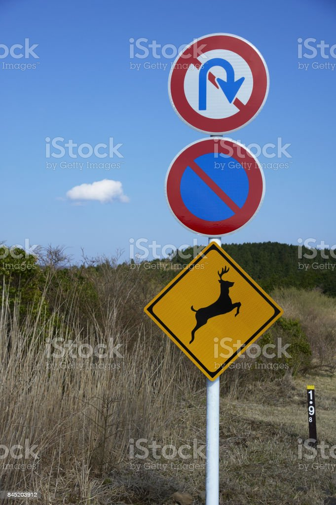 Road signs of deer jumped out attention stock photo
