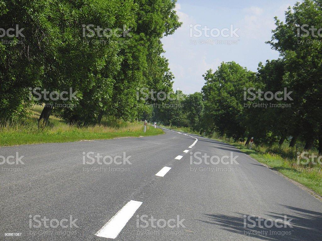 Road [Sunny day] royalty-free stock photo