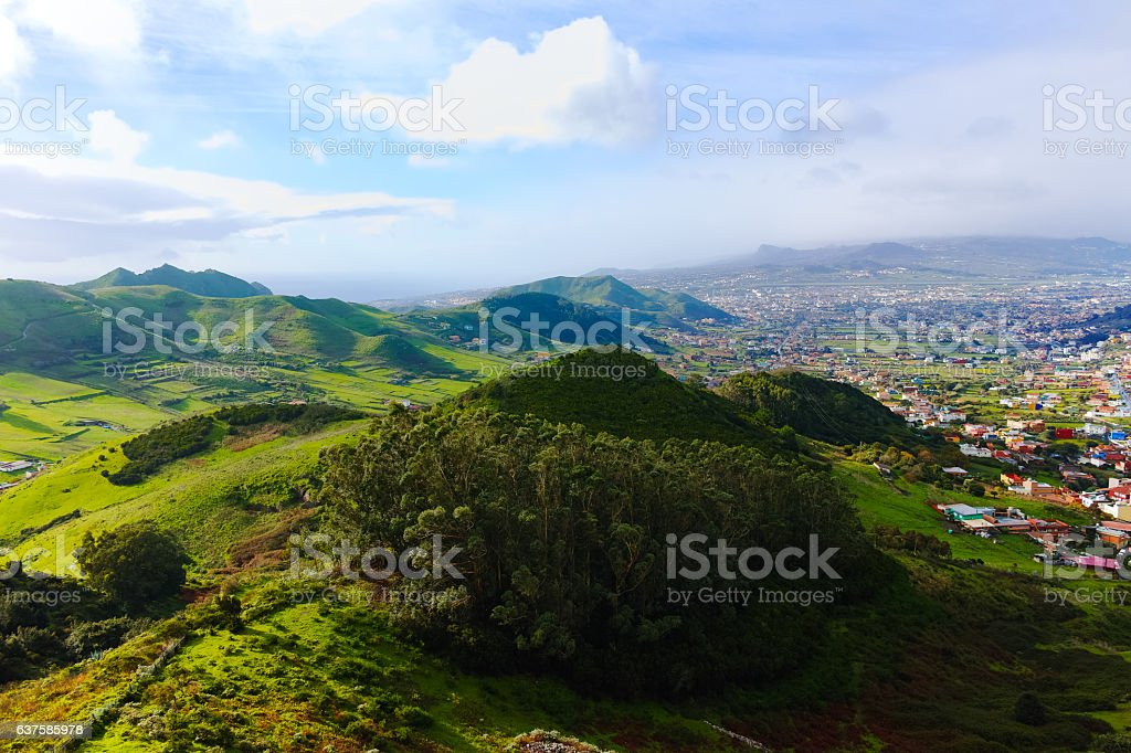 Road TF12 Anaga Rural Park - ancient forest on Tenerife stock photo