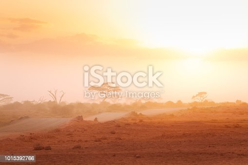 Misty view of African savannah Masai Mara with dirt road and acacia trees silhouettes at sunset