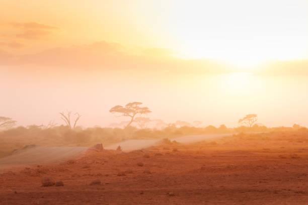 Straße durch afrikanische Savanne im dunstigen Licht – Foto