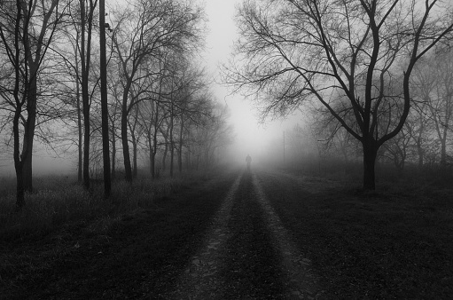 istock Road through alley on a misty winter day 958399764
