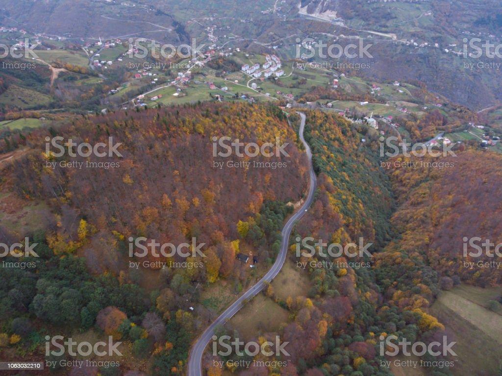 Yol Sonbahar Ormanı - havadan görünümü stok fotoğrafı