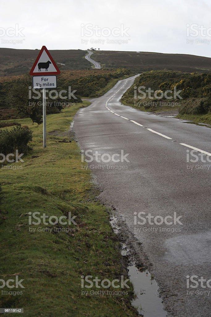Road through Exmoor National Park royalty-free stock photo