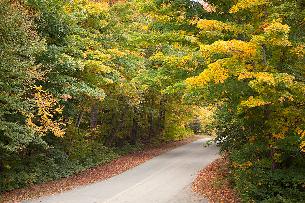Road Through Fall Colors stock photo