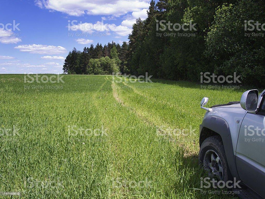 Road through field. stock photo