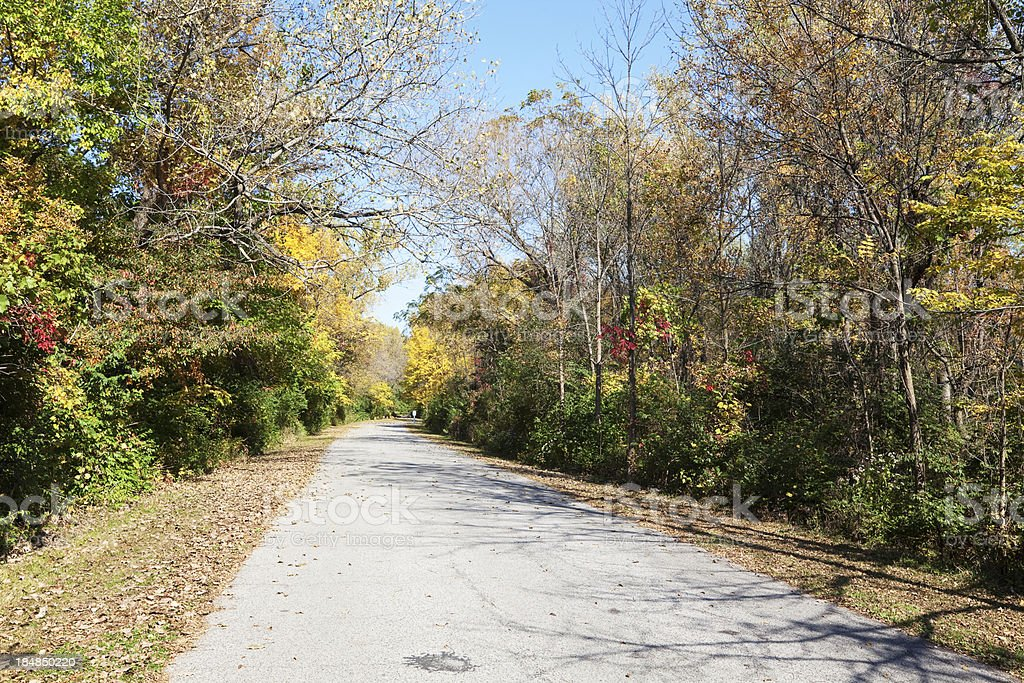 Road through Forest in Autumn. Southeast Chicago. royalty-free stock photo