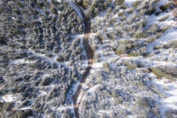 Waldstraße im Frühlingswinter mit Schnee auf Bäumen in Österreich Tirol – Foto