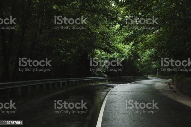 Photo of Road through forest. Rain. Overcast.