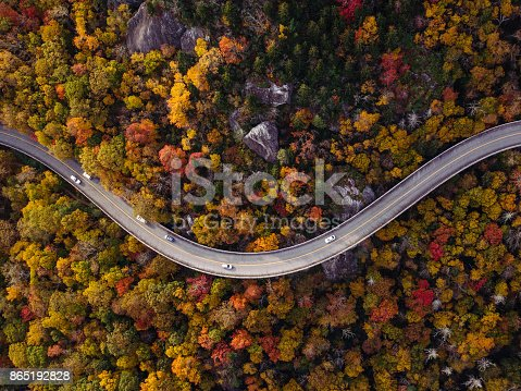 istock Road through forest with cars 865192828