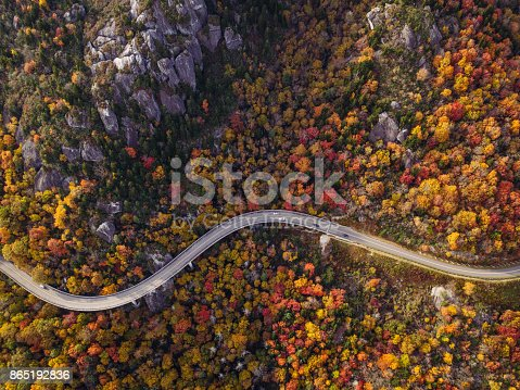 istock Road through forest with cars 865192836