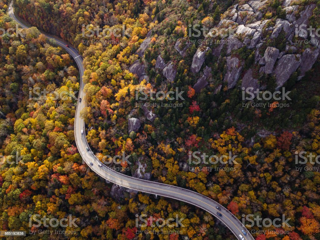 Road through forest with cars stock photo