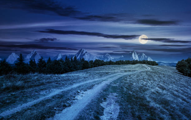 road through forested mountain ridge at night stock photo