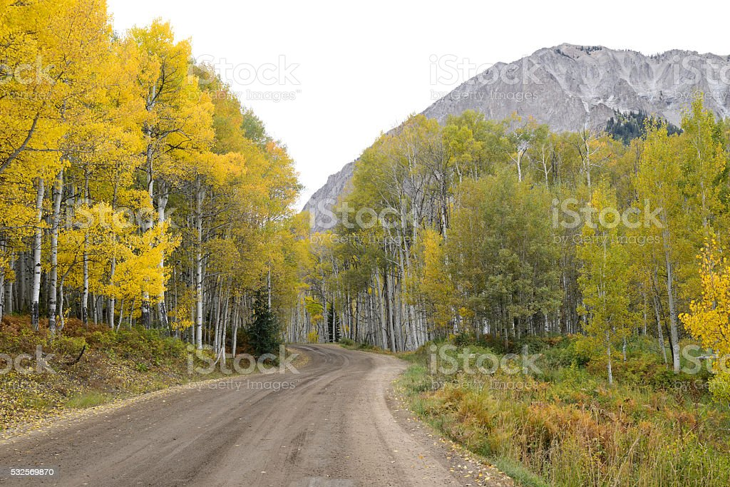 Road through Gunnison National Forest stock photo