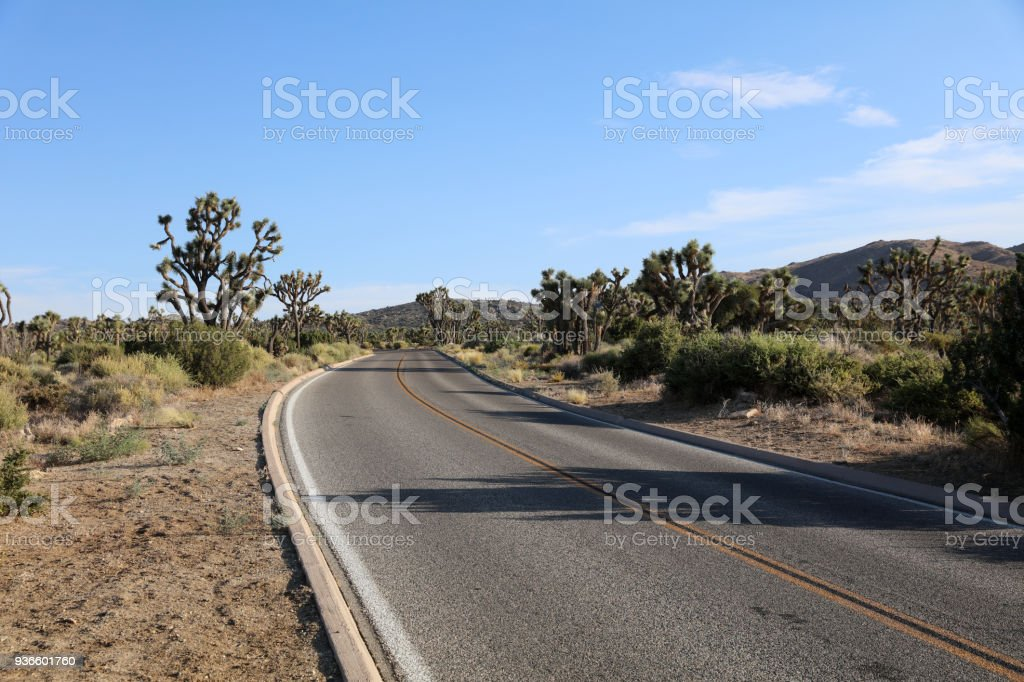 Straße durch den Joshua Tree National Park. Kalifornien. USA – Foto