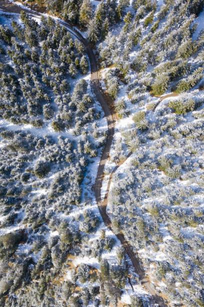 Straße durch Bergstraße mit Wald im Winter in Österreich Tirol – Foto