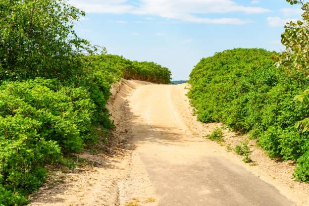 vägen genom sand dune - sand dune sweden bildbanksfoton och bilder