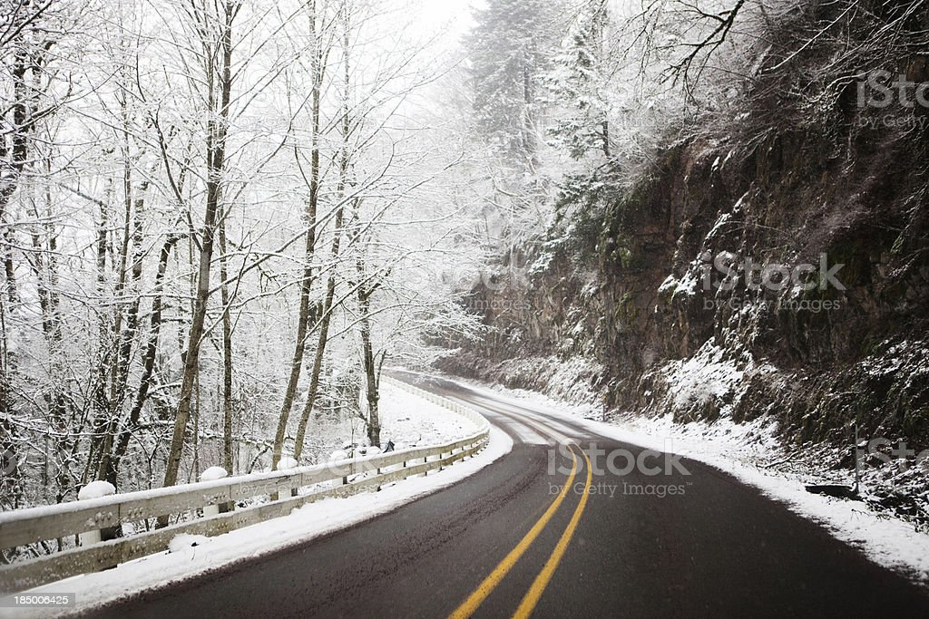 Road through snowy forest royalty-free stock photo