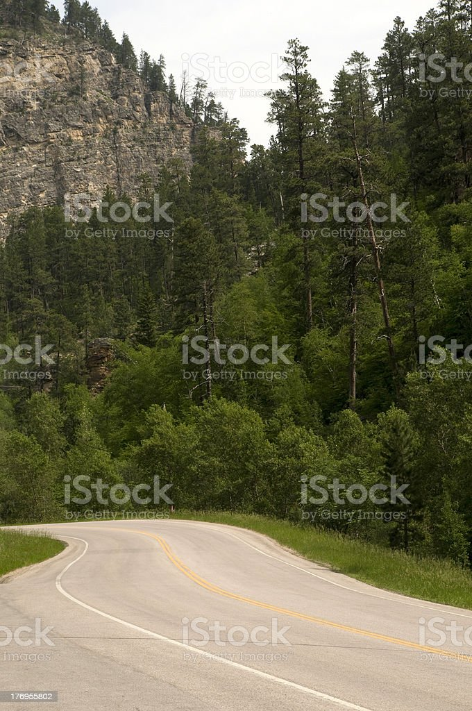 Road Through Spearfish Canyon stock photo