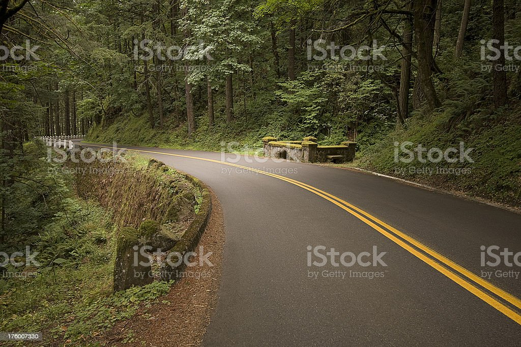 Road through the Columbia River Gorge royalty-free stock photo