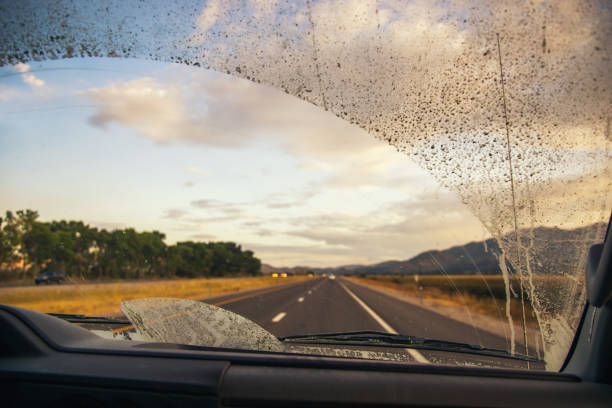 Road through the dirty truck windshield, focus on the wiper Driving on a road with a dirty windshield windshield wiper stock pictures, royalty-free photos & images