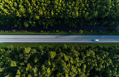 Aerial view of a road across the forest. Photo taken directly above from a drone in the early hours of the morning.