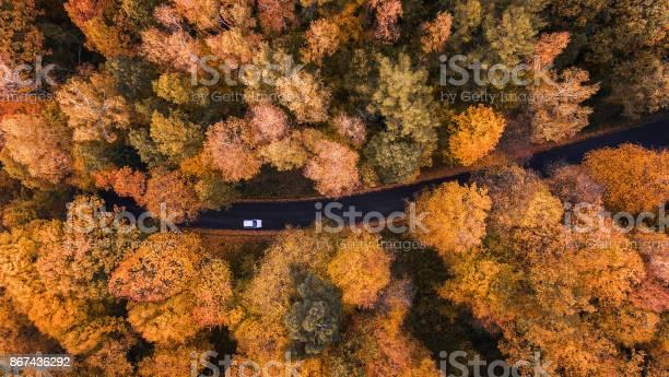 Road through the forest picture id867436292?b=1&k=6&m=867436292&s=612x612&h=3jc5yqwedrlrlxst4z3grivdqe9txhg6yyaqorohw8i=