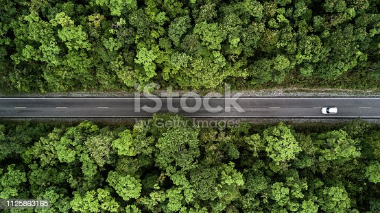 istock Road through the green forest, aerial view road going through forest. 1125863165