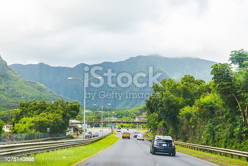 Road through the heart of the Hawaii island with palms all around it
