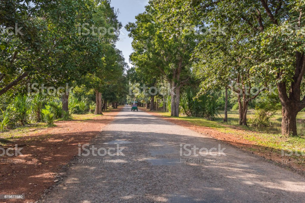 Road through the jungle, Cambodia royalty-free stock photo