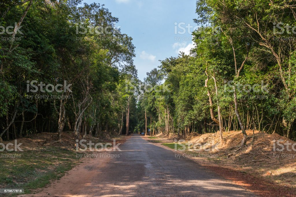 Road through the jungle, Cambodia royalty-free stock photo