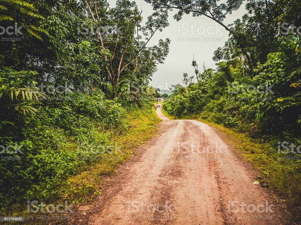 Road through the jungle. Liberia, West Africa stock photo