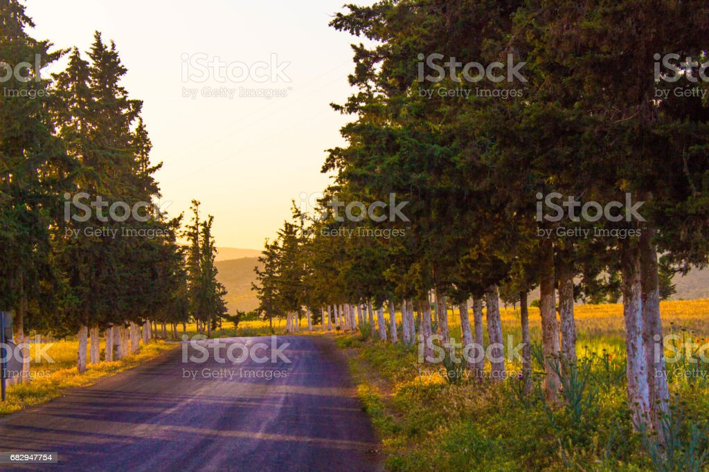road through the mountain royalty-free stock photo