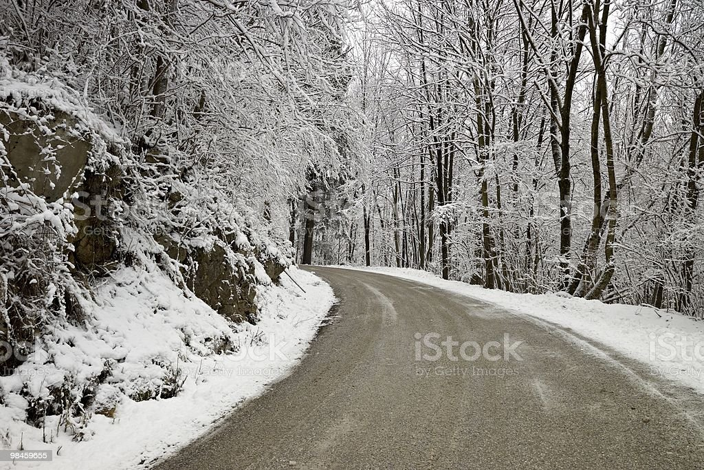 Road through the mountains during winter royalty-free stock photo