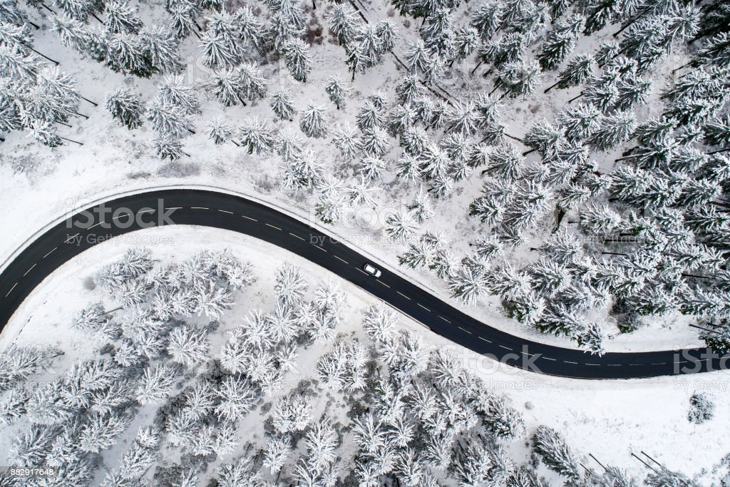 Road through the wintery forest stock photo