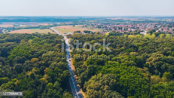 istock Road through the woods 1272688825