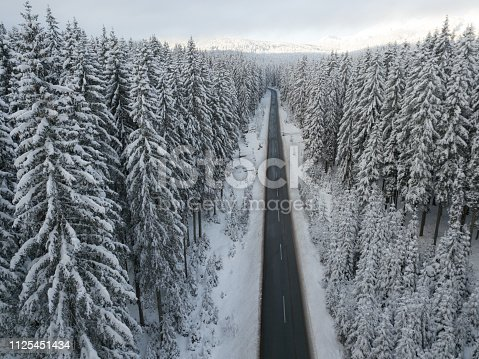 1066508460 istock photo Road through winter snow covered forest 1125451434