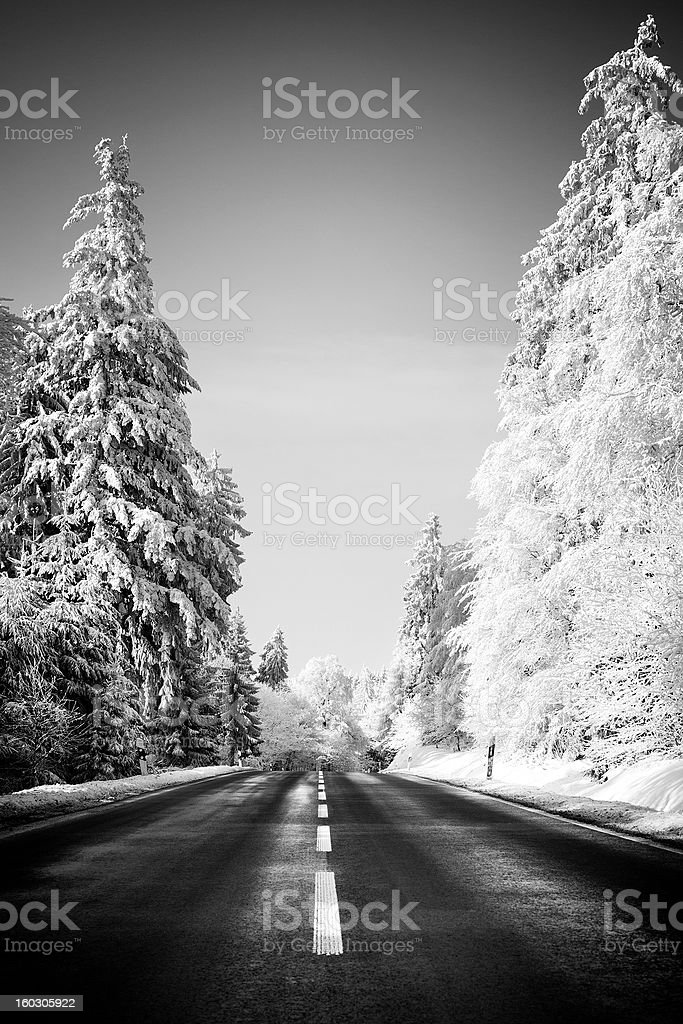 Road through winter wonderland royalty-free stock photo