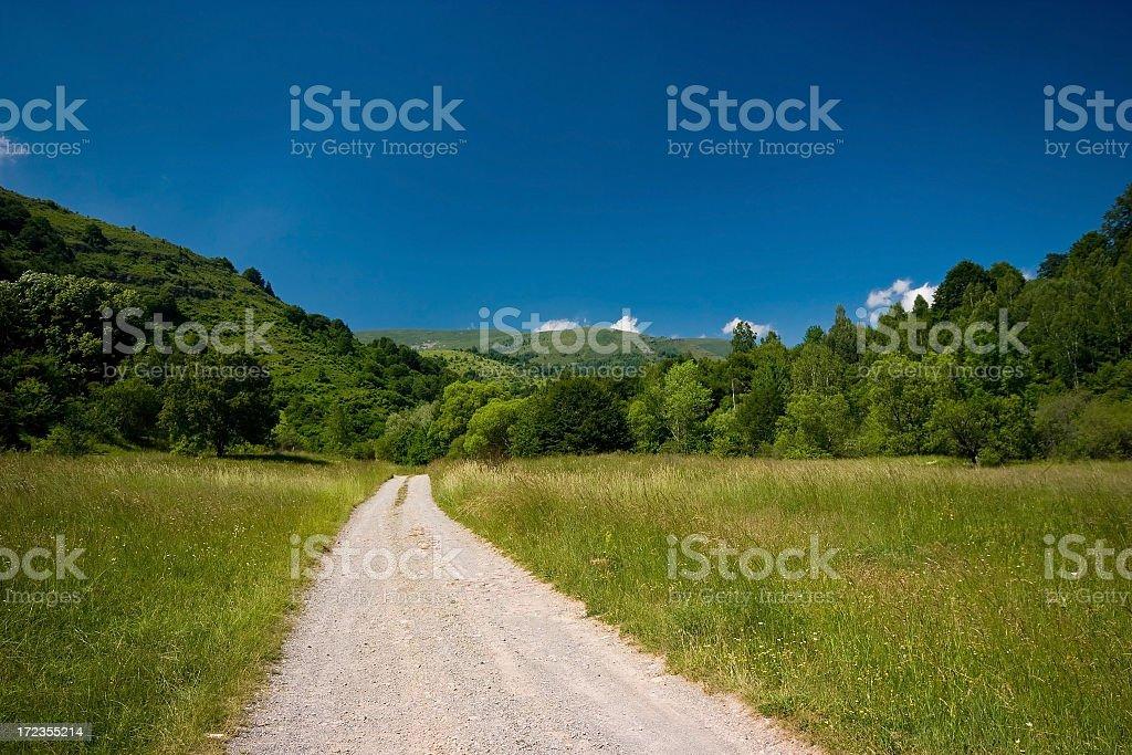 Road thru nature royalty-free stock photo