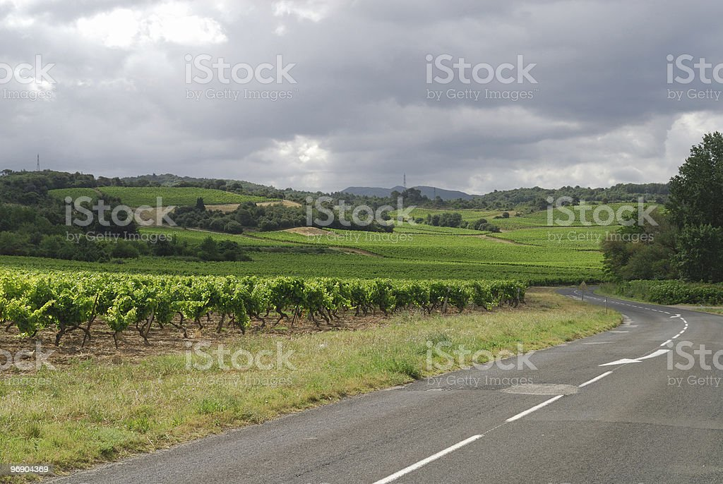 Road to Carcassonne (France) and vineyards royalty-free stock photo