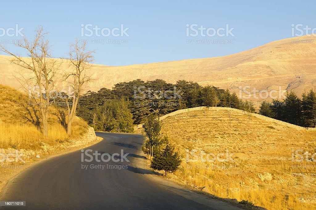 Road to Cedars of Lebanon near Bcharre, Lebanon stock photo