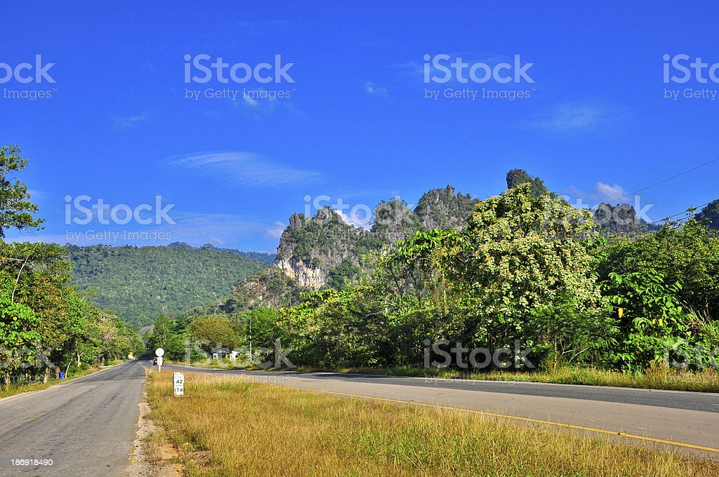 Road to forest at South of thailand stock photo