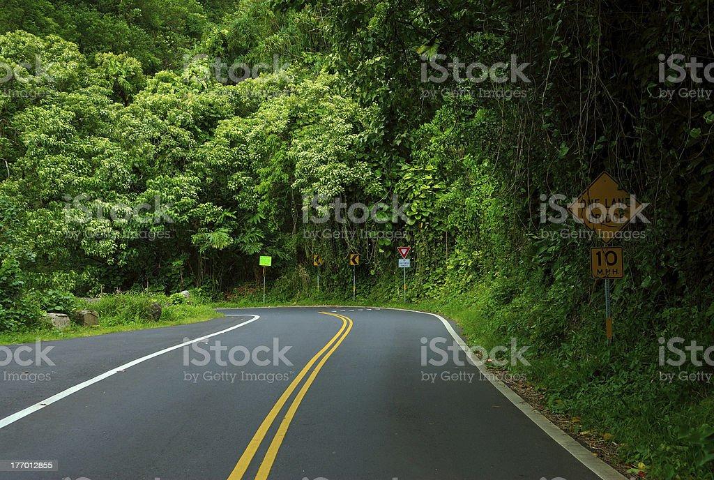 Road to Hana stock photo