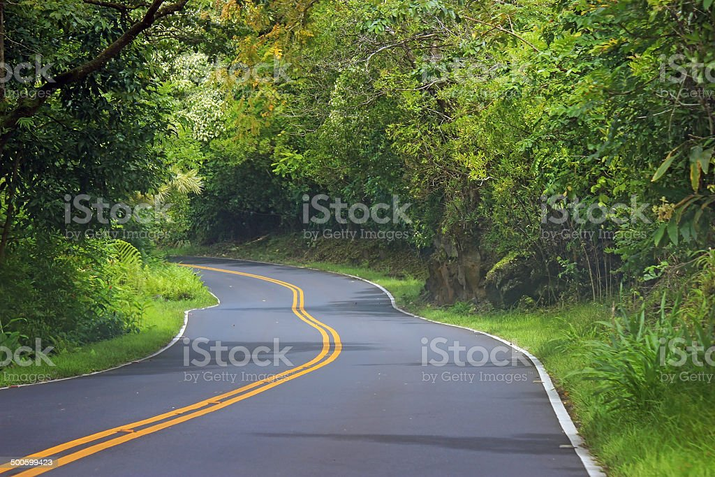 Road to Hana stock photo