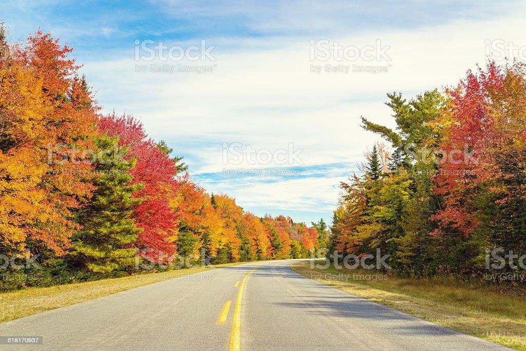 Road to Keji in fall stock photo