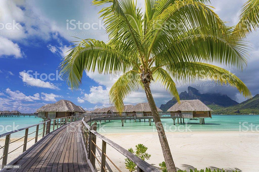 Road to paradise stock photo